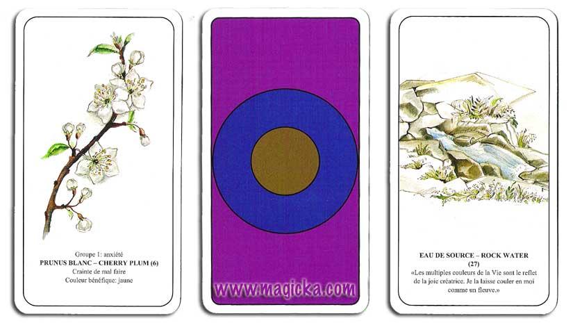 Cartes d'Harmonisation par les fleurs et les Couleurs cartes
