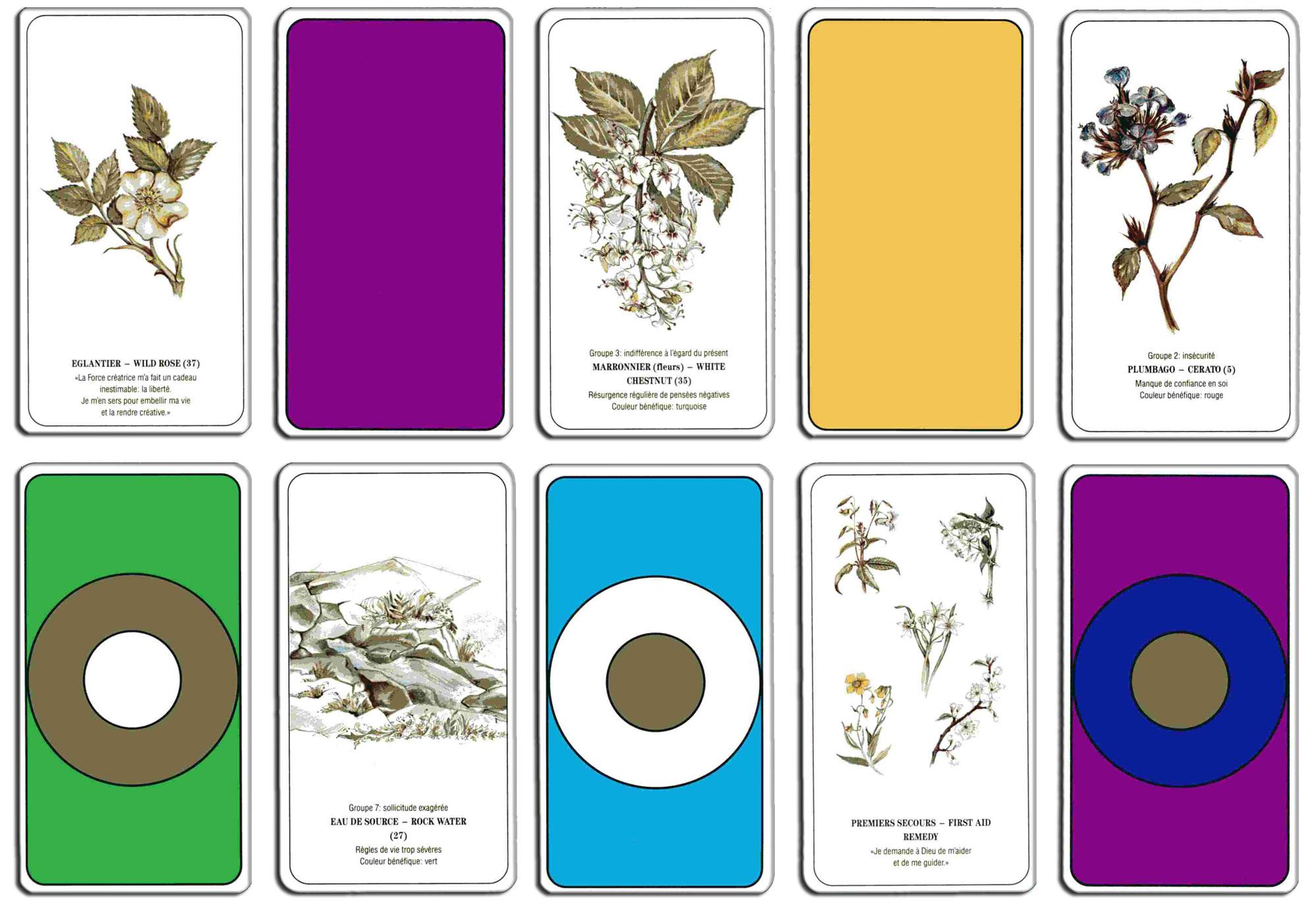 Cartes sur les fleurs de Bach
